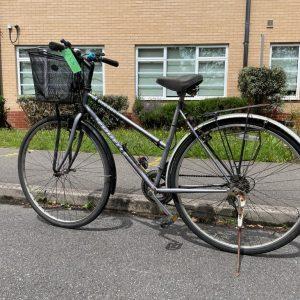 Vintage adult bike
